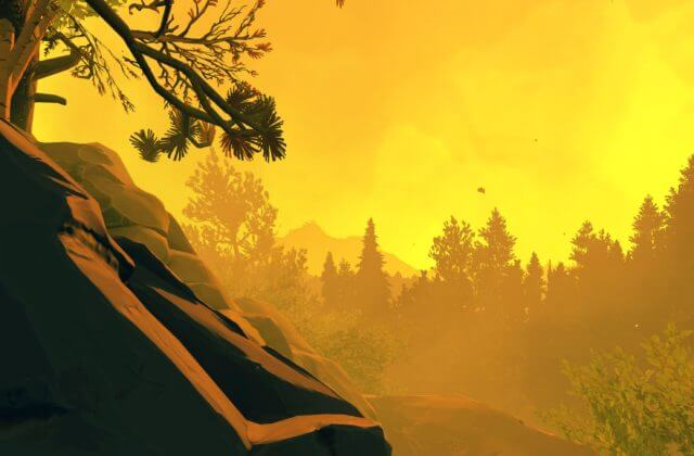 A golden glow from nearby fire calmly lights up the forest.