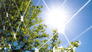 Trina Solar provides 190MW of its solution to solar park in Spain