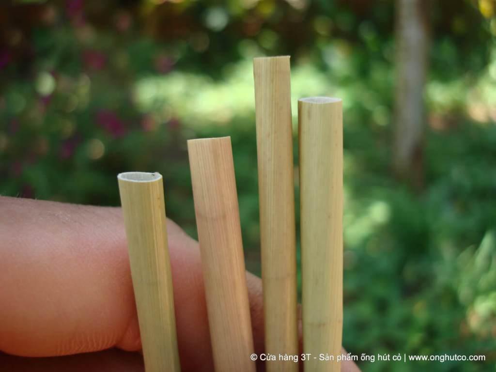 Dried grass straws