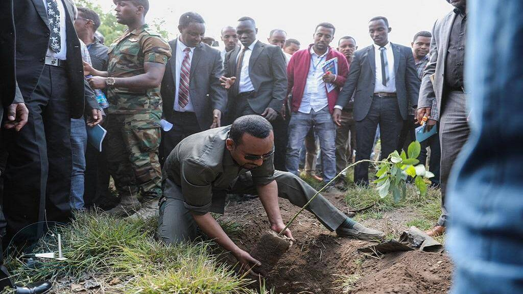 Ethiopia's prime minister Abiy Ahmed kicks off his rescue mission planting the first sapling