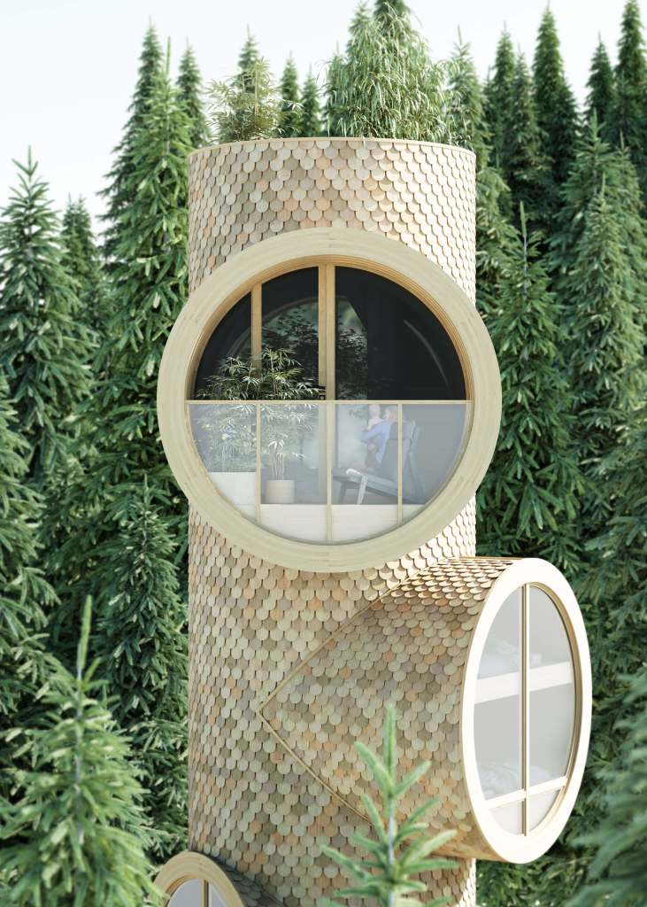 The Bert modular tree house
