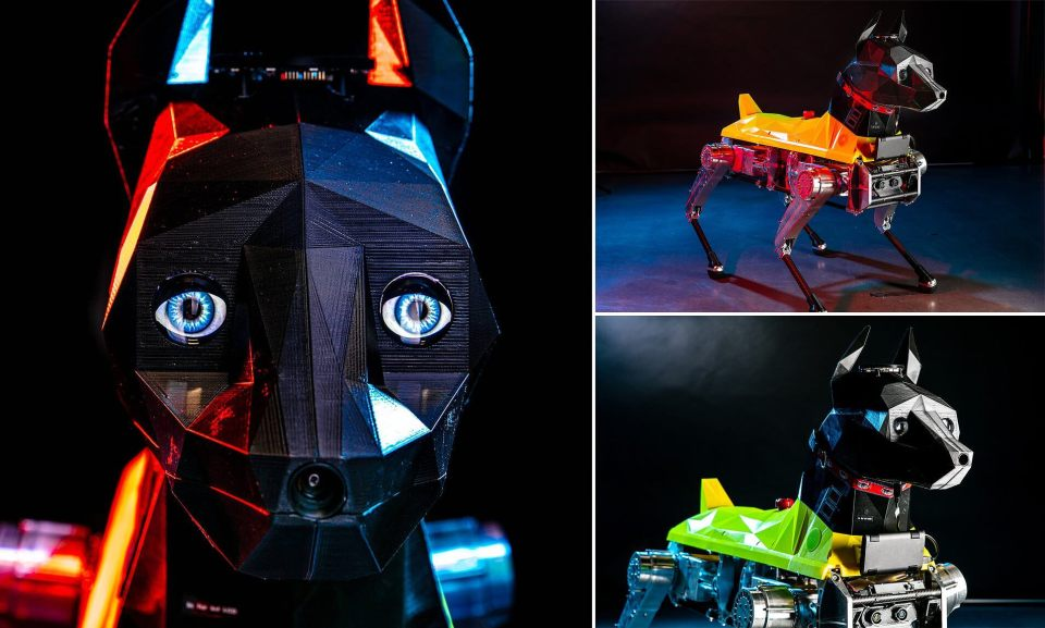 FAU's Astro Robot-Dog Has A Functional Brain In Its 3D