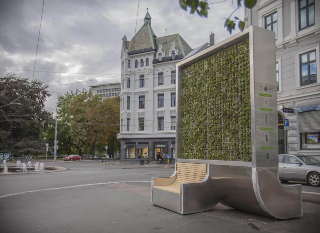 Mossy wall eats as much pollution as 250 trees