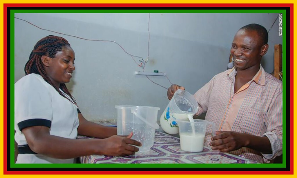Youmma Solar Fridge Helping Small African Businesses Live Off The Grid