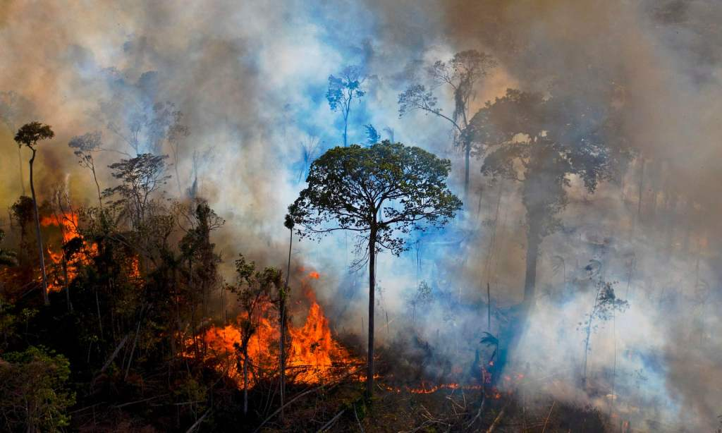 The Amazon Is In A Worse Condition Than Previously Thought
