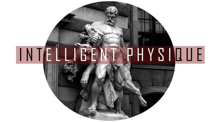 Intelligent Physique