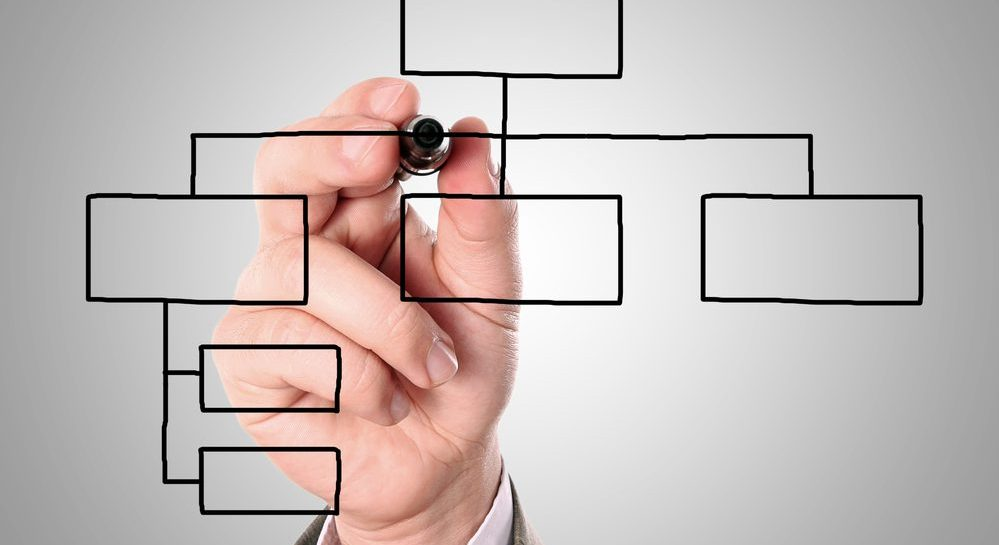 How to Structure Your Sales Team