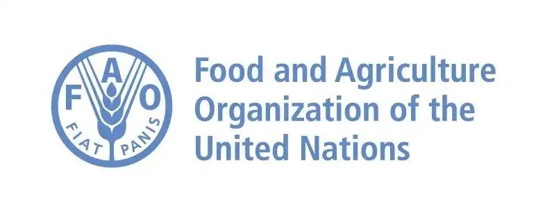 FAO INTERNSHIP UNITED NATIONS