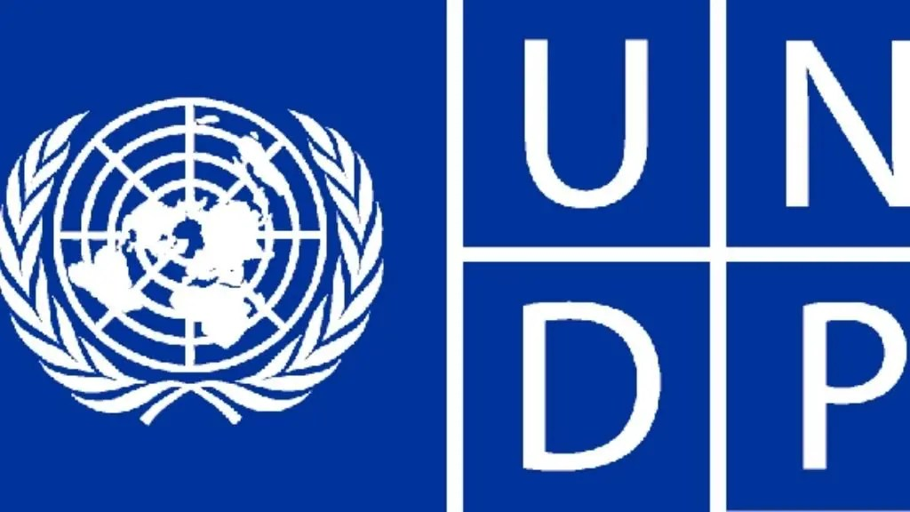 Economy Specialist at the United Nations Development Programme (UNDP)    Intel Region