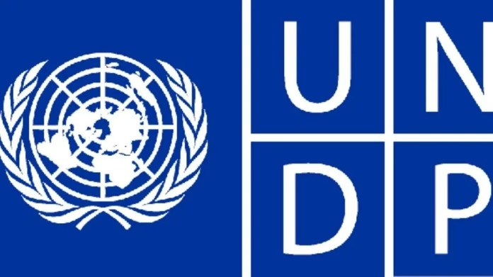 International Individual Consultant at the United Nations Development Programme (UNDP)