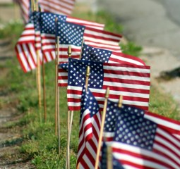 Row of USA Flags 1a