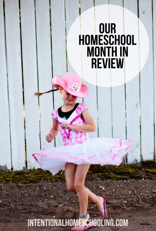 Our Homeschool Month - July in Review, what we did for a variety of subjects, but, let's be honest, we mostly took a summer break.