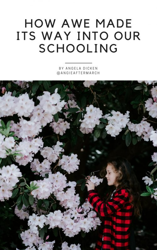 Intentional Homeschooling Collective - Digital Homeschool Magazine