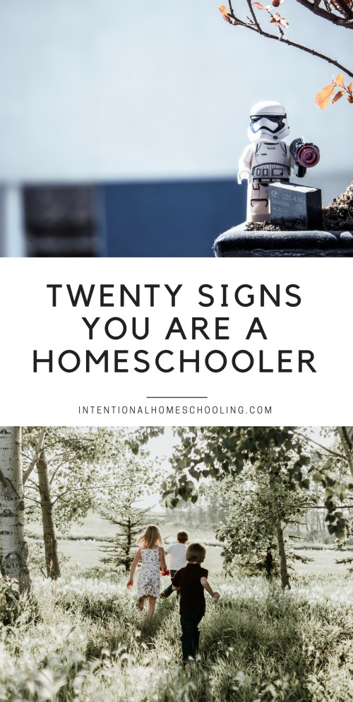 Twenty Signs You are a Homeschooler