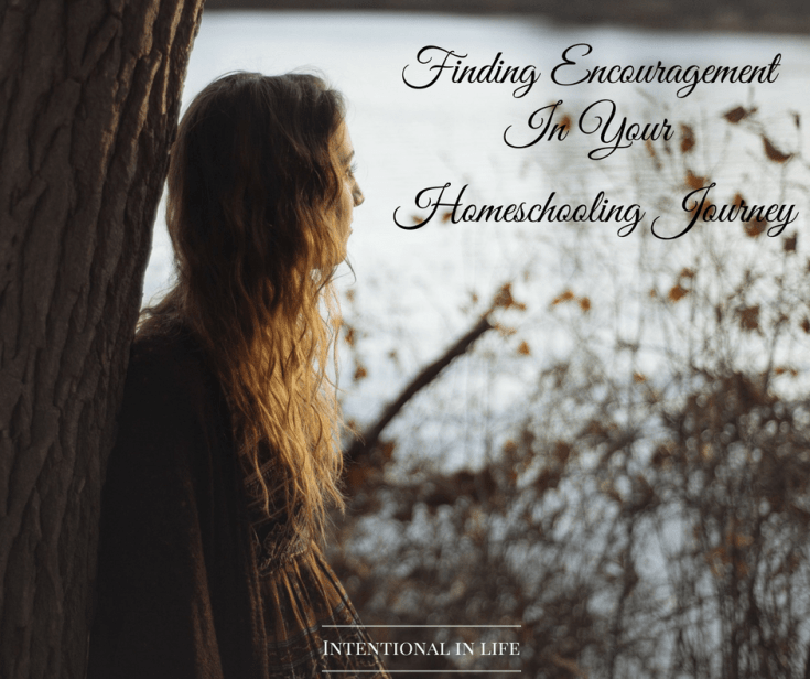 Finding Encouragement In Your Homeschooling Journey