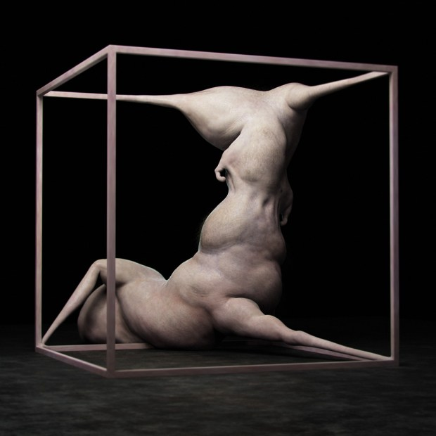 Abhominal, an archaic word meaning inhuman, is an exploratory weblog of the human form. The digital sculptures are a fusion of geometric, architectural and biological abstract forms