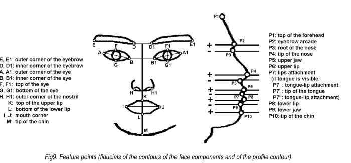 Detecting human facial expression by common computer vision