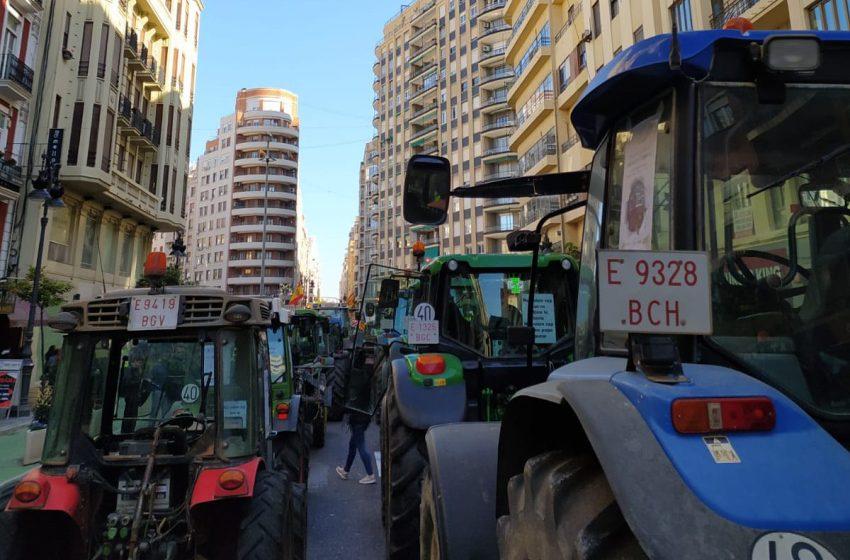 El sector arrocero realizará una tractorada en Valencia para reclamar medidas que garanticen su viabilidad