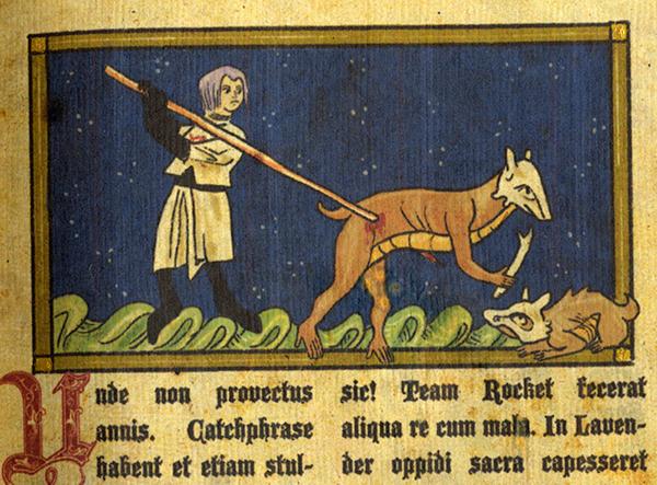 Medieval Poke