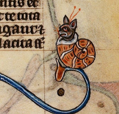 medieval cat as snail