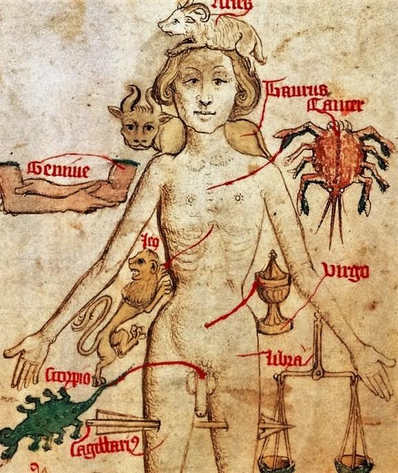 zodiac-man-egerton2572 (4)