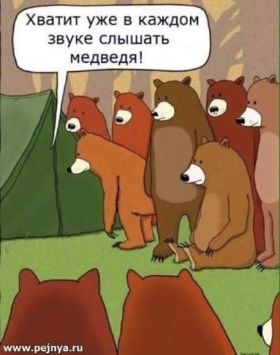 russian_bears