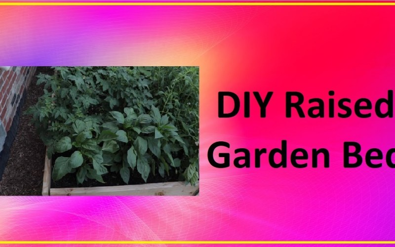 DIY Raised Garden Bed – EASY Tips and Tricks