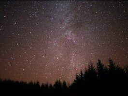 Photo showing the dark skies over Galloway Forest Park full of stars