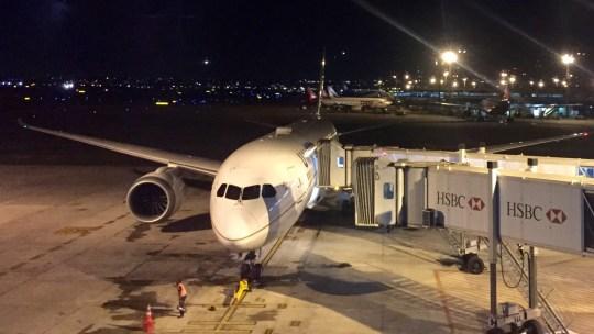 united 787  - 1