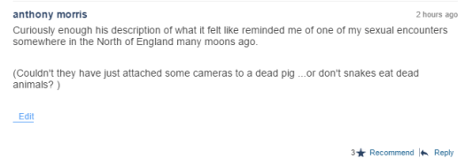 My favourite comment ever - left under a video of a man being eaten by an anaconda.