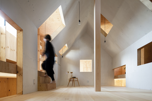 Plywood house | Architecture | mA-style architects | Ant House