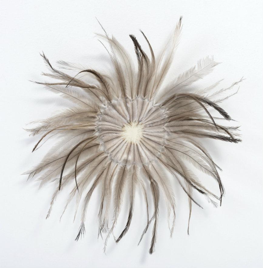 María Fernanda Cardoso / Sin título, plumas, plástico y tul. 31 cm de diámetro. Sin fecha.