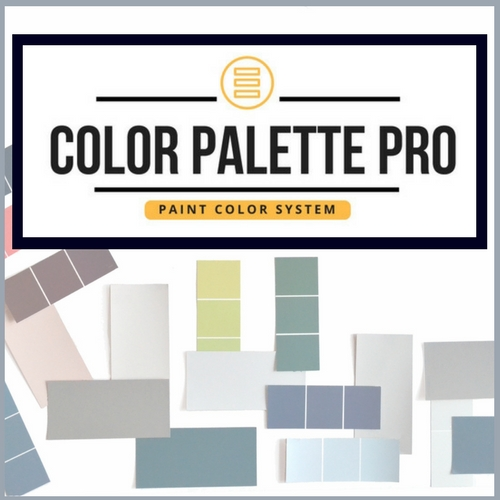 INTERIOR CRAVINGS products and services color palette pro course