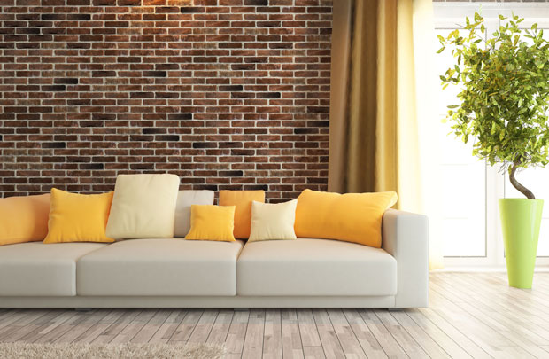 accent-wall-and-sofa