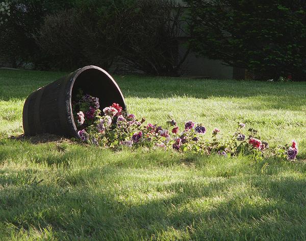 Idee per decorare il giardino guida giardino - Idee per aiuole da giardino ...