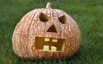 Best 12 Halloween Pumpkin Design Ideas To Inspire You
