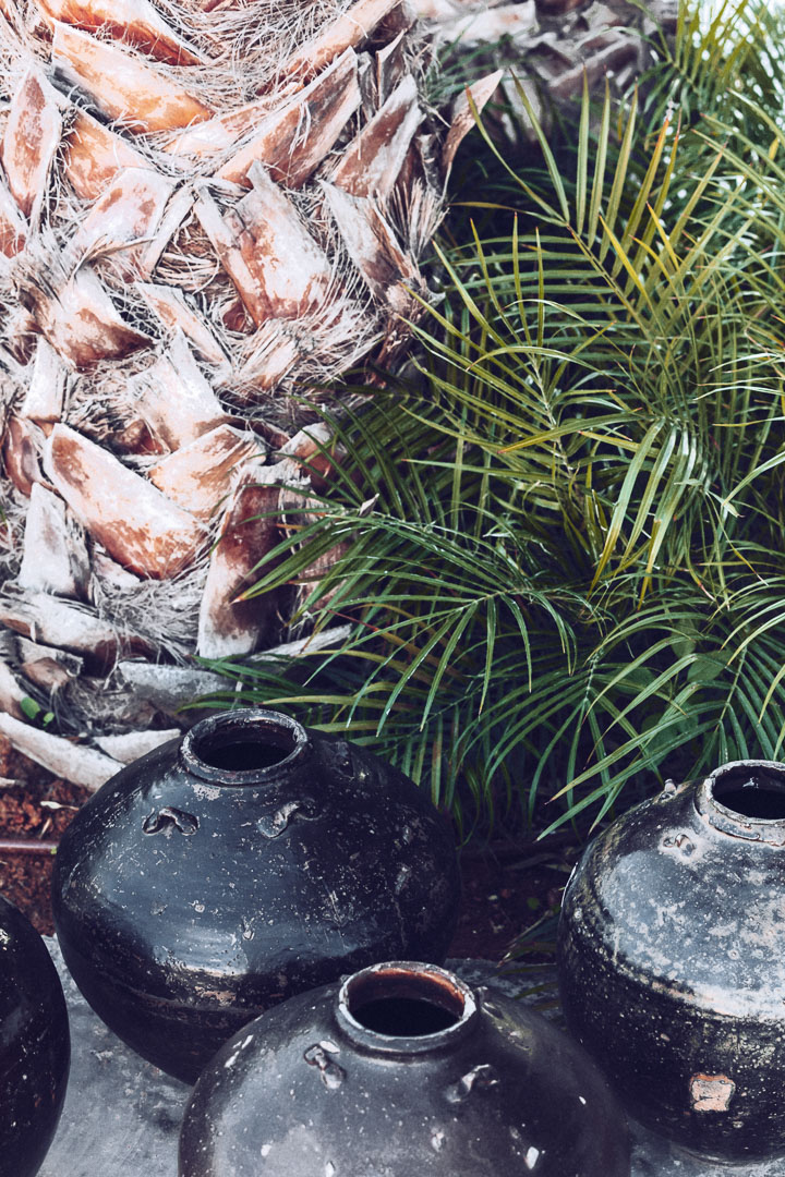 Detalle diseño arquitectura real estate de jarrones y palmera al exterior del restaurante de Casa Cook Ibiza en las Islas Baleares