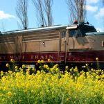 Image Courtesy of Napa Valley Wine Train