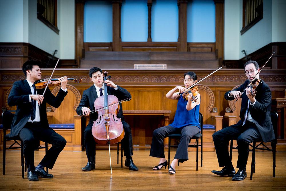 Telegraph-Quartet(L-R)_Eric-Chin(violin)_Jeremiah-Shaw(cello)_Pei-Ling-Lin(viola)_Joseph-Maile(violin)_photo-Eric-Chin2