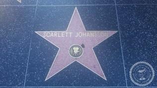 Hollywood (3)
