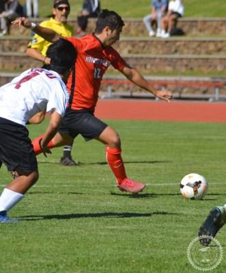 Dani - soccer (16)