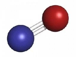 Nitric Oxide(NO2) Molecule, Nitric Oxide Detector/NO2 Detector