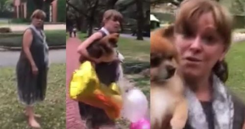 socialitefeat 500x263 Socialite Filmed Freaking Out Over Baby Photo Shoot on Public Property