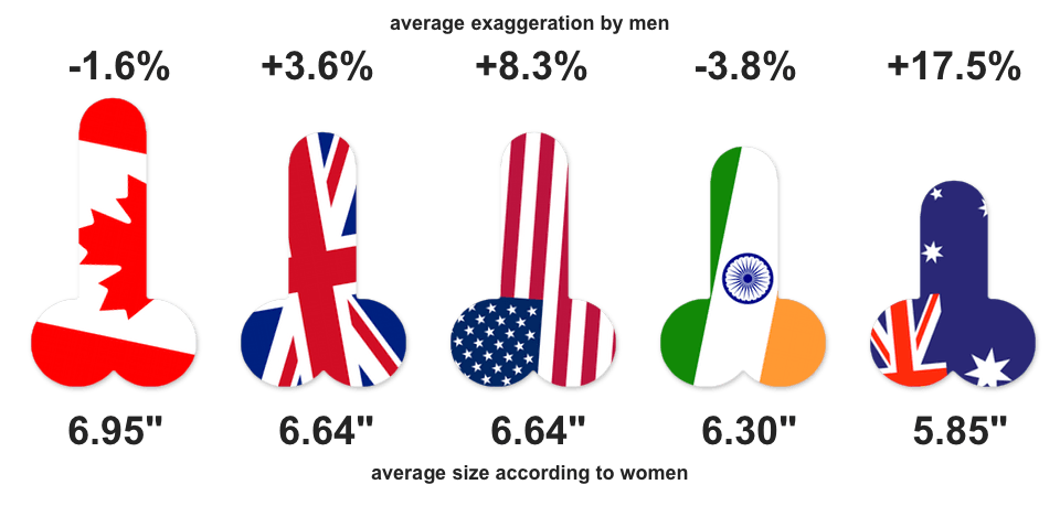 What Is The Average Penis Size? - Biggies Boxers