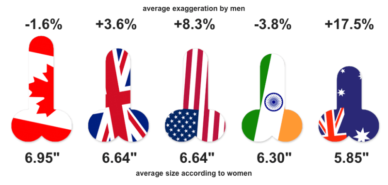 what is the average penis size for a man