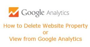 Google Analytics - How to Delete View