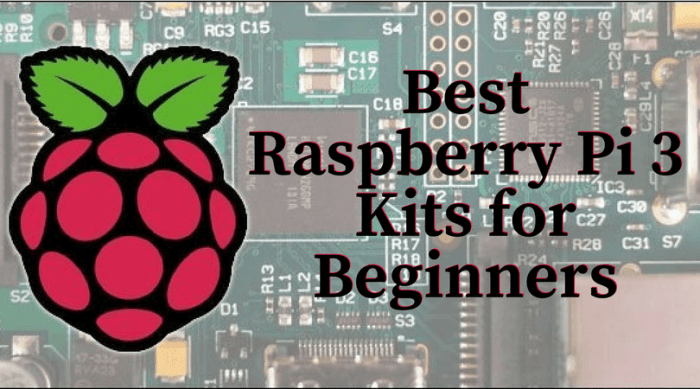 Best Raspberry Pi 3 Kits for Beginners