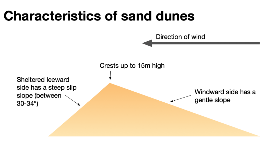 Characteristics of sand dunes