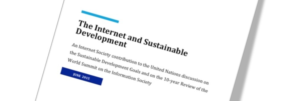 The Internet and Sustainable Development