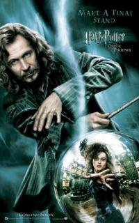 Harry Potter and the Order of the Phoenix Poster #9